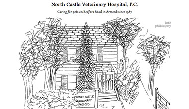North Castle Veterinary Hospital website
