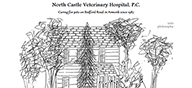 North Castle Veterinary Hostpital website